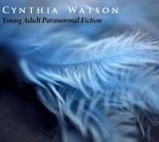 Making It Into the 2011 Amazon Breakthrough Novel Contest