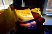 Book Review: Elaine Neil Orr –  A Different Sun
