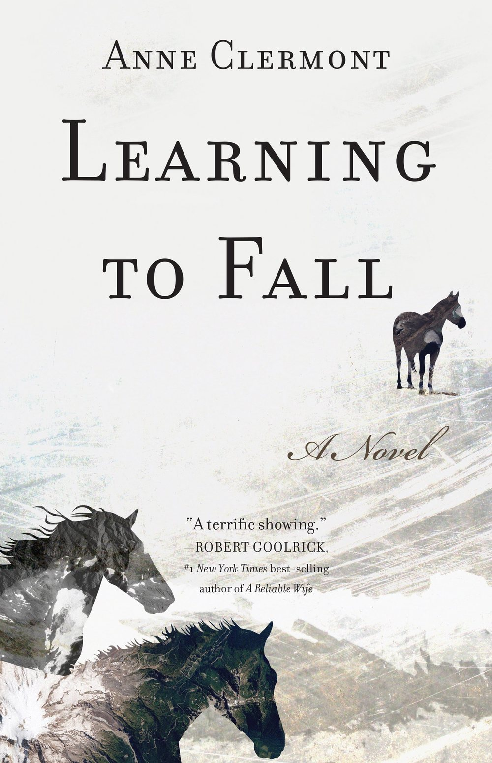 online novel